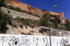 2011 Entorno Alcazaba